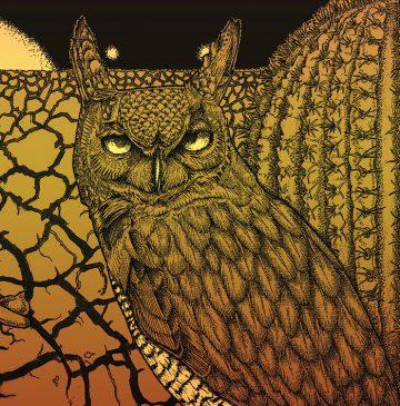 Albert Montoya Owl Illustration